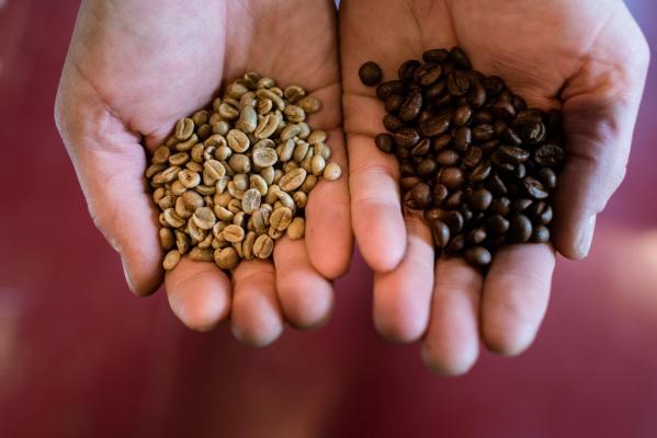 Amelandfoto-koffie-2021-6